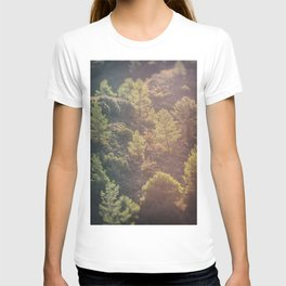 Pines in the mountains T-shirt