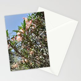 Pink Nerium Stationery Cards
