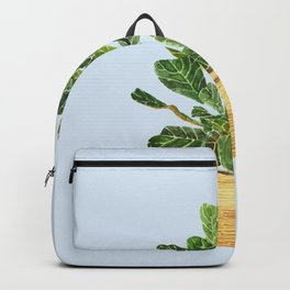Fiddle Leaf Fig in a Basket- Ficus Lyrata Backpack