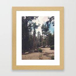 Mount San Jacinto State Park Framed Art Print