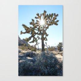 Not THE Joshua Tree Canvas Print
