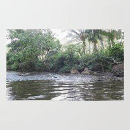 Where the River Runs Rug