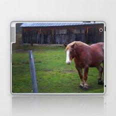 Horse Color Laptop & iPad Skin