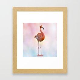 digital painting of Pink flamingo Framed Art Print