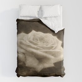 Pink Roses in Anzures 3 Antiqued Comforters