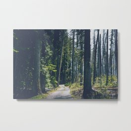 Glacier Path Metal Print