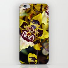 Leopard Orchid iPhone & iPod Skin