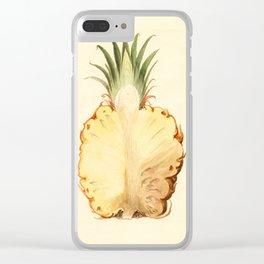 Pineapple Sliced in Half Vintage Illustration Clear iPhone Case
