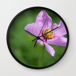 Cosmos Flower Wall Clock