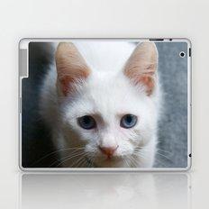 Turkısh Van Cat Laptop & iPad Skin