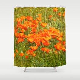 Golden Poppies 2017 Shower Curtain