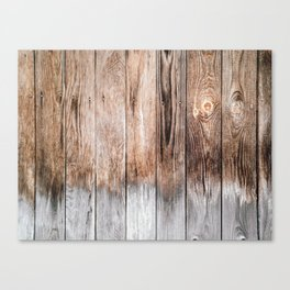 Gradient on the woods Canvas Print