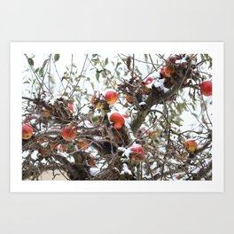 Winter Apple Tree Art Print