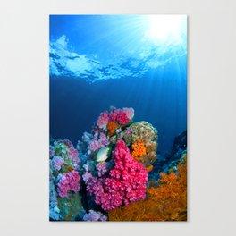 Undersea Tropical Coral Canvas Print