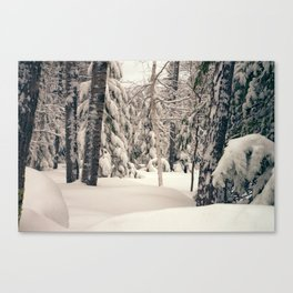 Winter Woods 2 Canvas Print