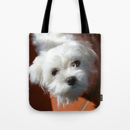 Cute Maltese asking for a treat Tote Bag