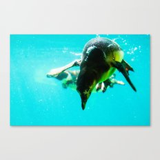 Dive 2 Canvas Print