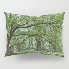 Elm Trees Pillow Sham