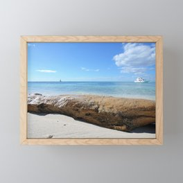 Driftwood on Isla Saona Beach Framed Mini Art Print