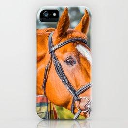 Horse head photo closeup iPhone Case