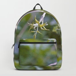 Growth and Transformation Backpack