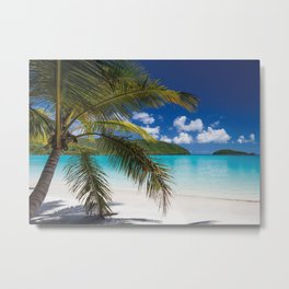 Tropical Shore Metal Print