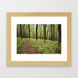 Forest Heritage Framed Art Print