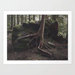Finding Ground Art Print