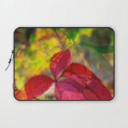 Autumn Rhapsody 2 Laptop Sleeve