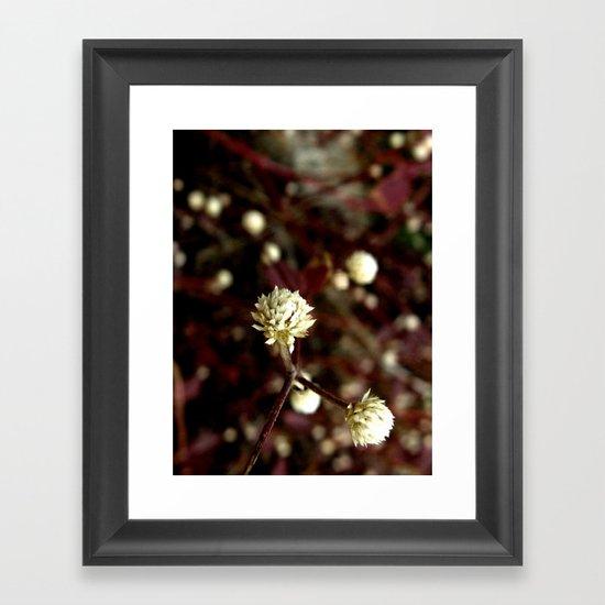 Blossoms in the university Framed Art Print