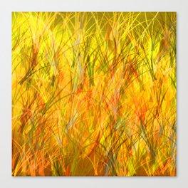 Warm grasses Canvas Print
