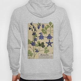 Maurice Verneuil - Ancolie - botanical poster Hoody