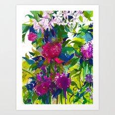 Summer Petals Art Print