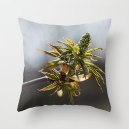 Spring Buds 2 Throw Pillow