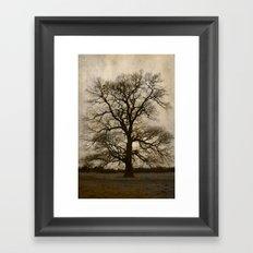 A grey day Framed Art Print
