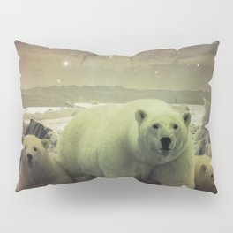 The Queen of the North Pole v.2 Pillow Sham