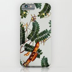 Under the Tamarind Tree #society6 #decor #buyart Slim Case iPhone 6s