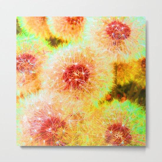 dandelions abstract IX Metal Print