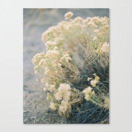 Bend, Oregon on Film Canvas Print
