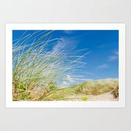 Vibrant Sand dune grasses against blue sky, Fistral Beach Art Print
