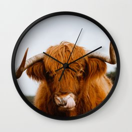 Scottish Highland Cow Sticking Long Tongue in Nose   Horns   Animal Photography Wall Clock