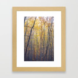 Yellow forest Framed Art Print