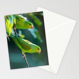 Parakeet Stationery Cards