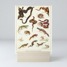 Adolphe Millot - Batraciens et reptiles - French vintage zoology poster Mini Art Print