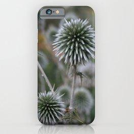Macro Seed Head of Round Headed Garlic  iPhone Case