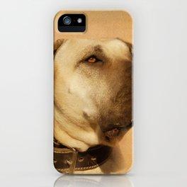 Perro de Presa Canario - Dogo Canario iPhone Case