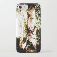 birch iPhone & iPod Cases featuring birch by Eva Lesko