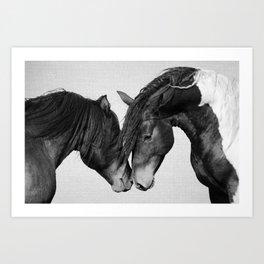 Horses - Black & White 4 Art Print