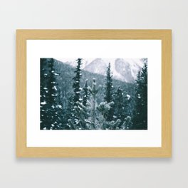Winter IX Framed Art Print
