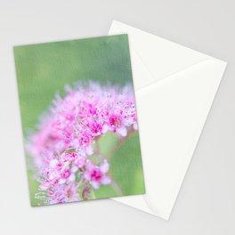 Spirea Stationery Cards